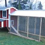 red chicken coop design