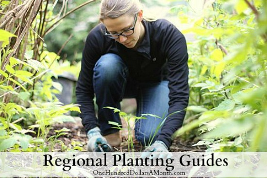 regional-planting-guides