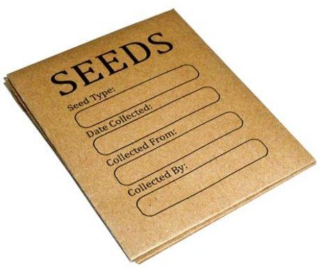 seed storage envelopes