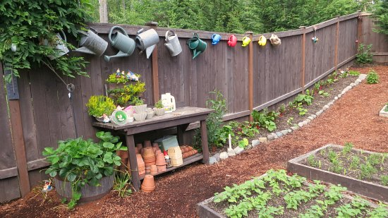 watering cans along the fence