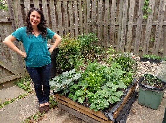 Mavis Mail – Garden Photos from Fairfax, Virginia