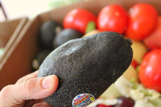 wrinkled avocado