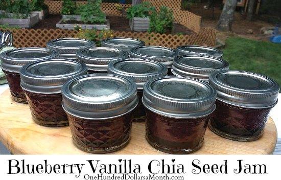 Blueberry Vanilla Chia Seed Jam