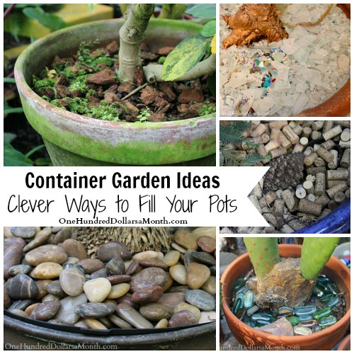 Container Garden Ideas – Clever Ways to Fill Your Pots