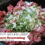 Crock Pot Ground Beef w Taco Seasoning