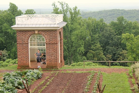 Thomas Jefferson's Monticello garden