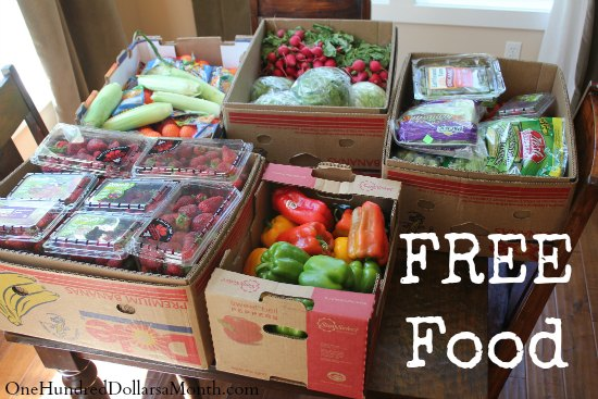 Food Waste In America – Feed Your Family for Free