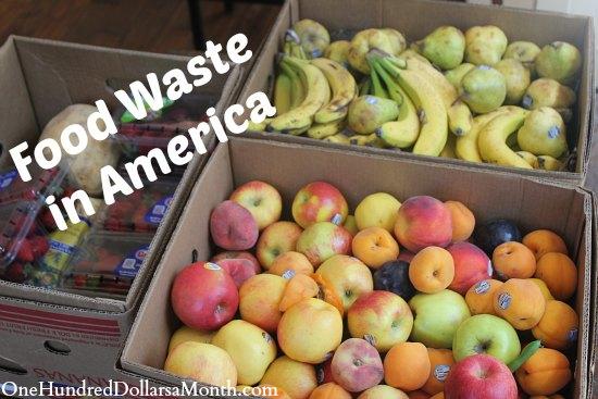 Food Waste In America – Banana Mania!