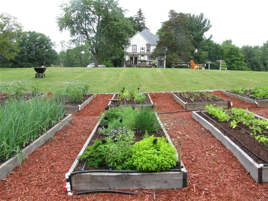 18 Amazing Garden Boxes from New York