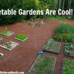 Mavis Butterfield | Backyard Garden Plot Pictures – Week 27 of 52