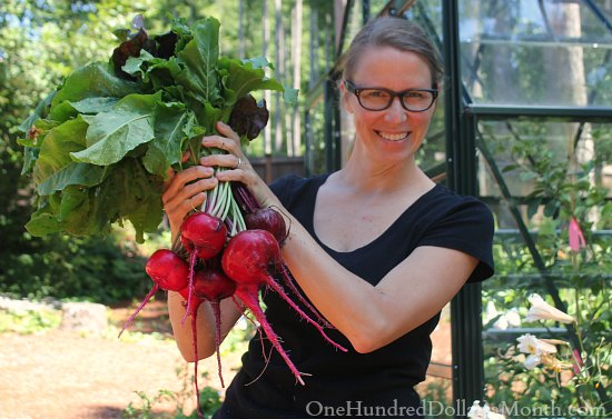 Mavis' Fall Vegetable Garden – Let's get this Party Started!