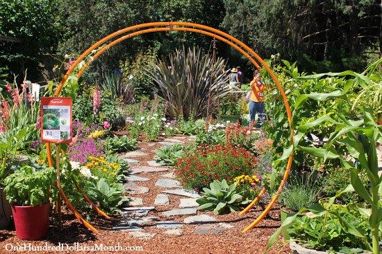 orange garden trellis