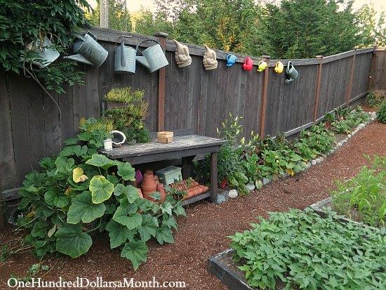 Mavis Butterfield | Backyard Garden Plot Pictures – Week 30 of 52