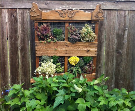 Wood Pallet Garden Ideas with Pictures