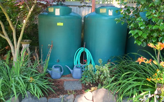 rain barrel water system