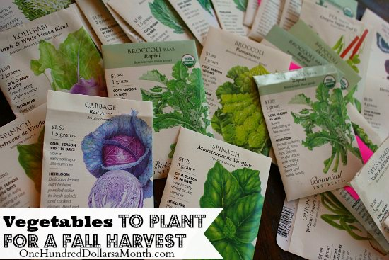 vegetables to plant for a fall harvest