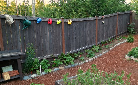 watering cans on fence