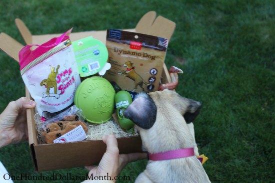 dog treat box box