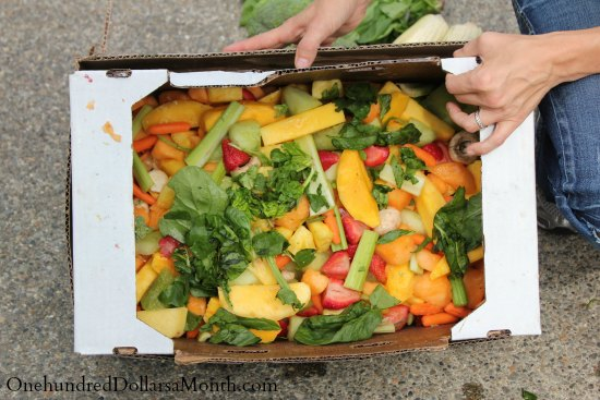 Food Waste In America – I'll Take What I Can Get