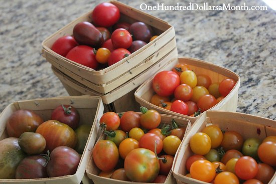How to Grow Your Own Food – 8/7/2013 Garden Tally