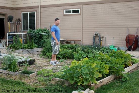 Garden Photos from Mark in Kuna, Idaho