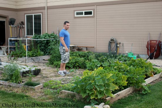 Garden Photos from Mark in Kuna, Idaho