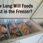 How Long Will Foods Last in the Freezer