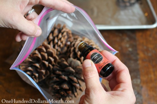 How to Make Scented Pine Cones