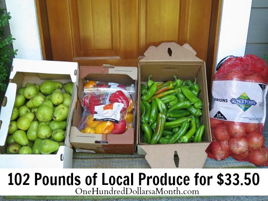 Stock Up on Produce When the Prices are Low – Wilco Case Sale