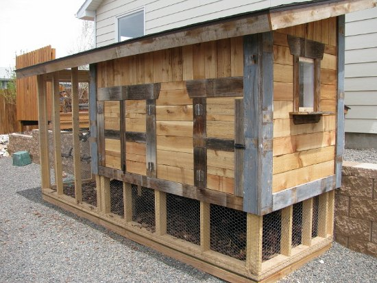 Lisa turned an old dog house into a new chicken coop for Cool chicken coop plans