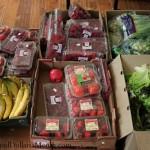 food waste in Amercia