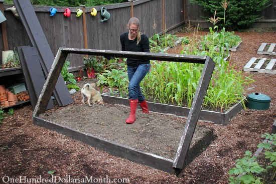 I can Garden Building New Garden Boxes