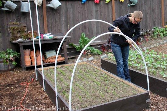 Hoop House Greenhouse Raised Beds
