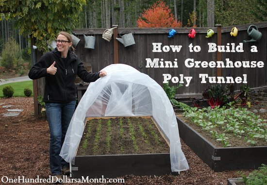 How to Build a Small Poly Tunnel