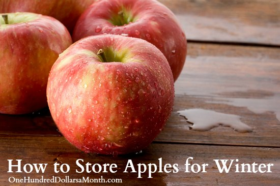 How to Store Apples for Winter