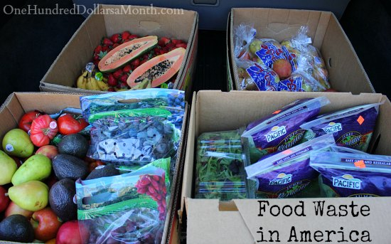 Food Waste In America – Why Don't People Buy Spotted Bananas?