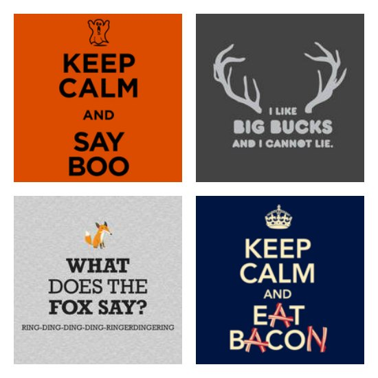 funny t-shirts what does the fox say