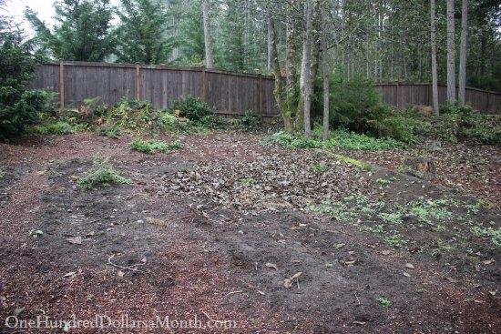 Mavis butterfield backyard garden plot pictures week 43 of 52 - Lasagna gardening in containers ...
