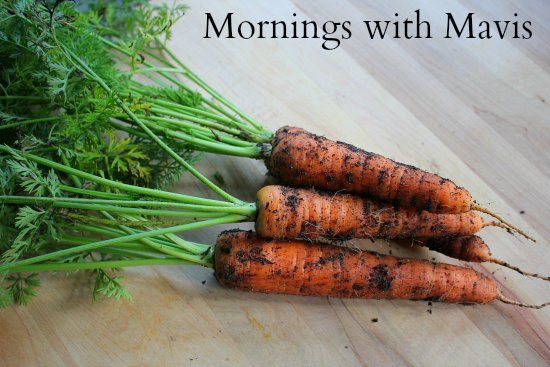 Mornings with Mavis – Amazon Deals, Free Kindle Books, Under Armour Sale, Gymboree, Organic Gardening