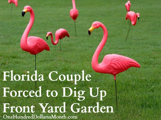 Florida Couple Forced to Dig Up Front Yard Garden