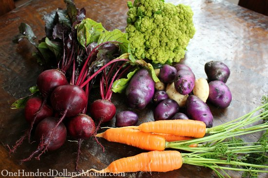 How to Grow Your Own Food – 11/21/2013 Garden Tally