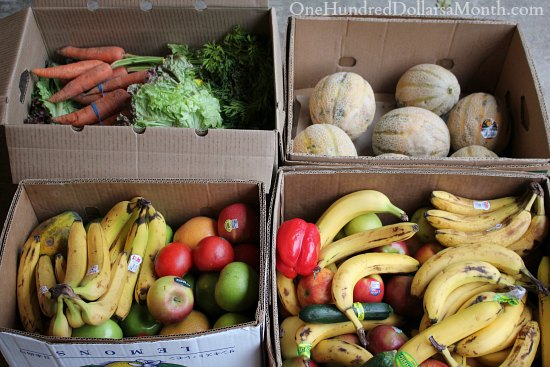 Food Waste In America – Can You Say Free Fruit?