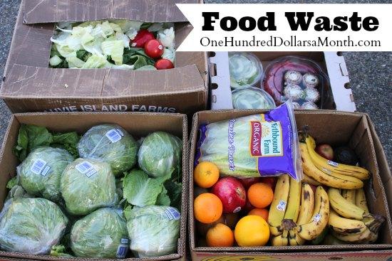 Food Waste In America – Free Fruit, Yes Please!