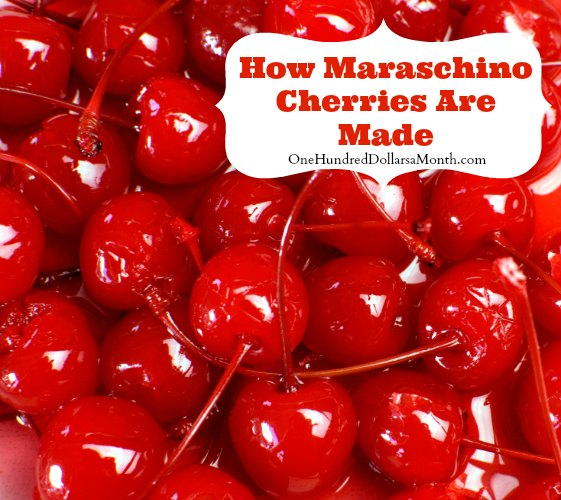 What's In My Food – How Maraschino Cherries Are Made