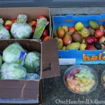Food Waste In America – The Monkeys Stole My Bananas!