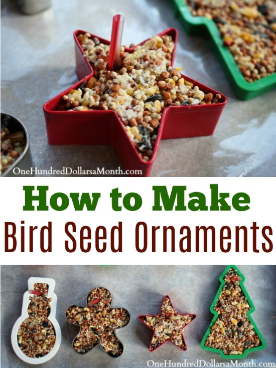 Outdoor Holiday Decorating – Homemade Bird Seed Ornaments