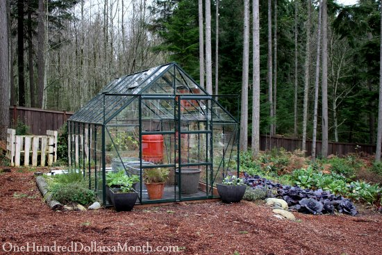 winter glass green house gardening