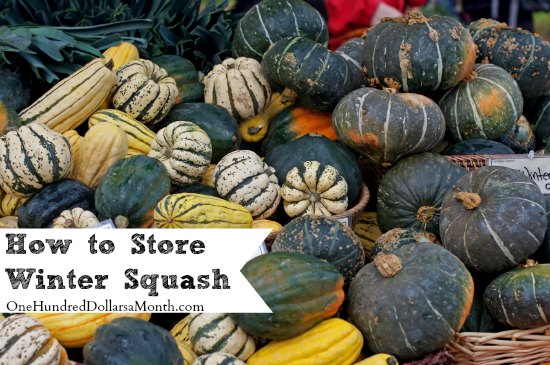 How to Store Winter Squash