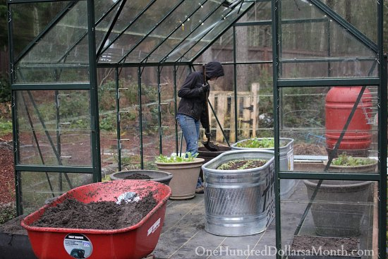 greenhouse garden winter