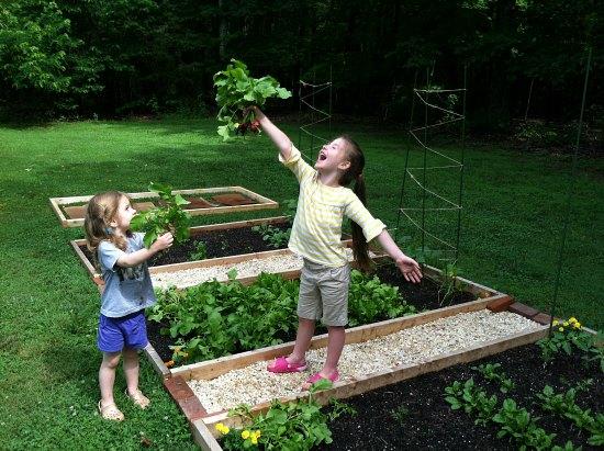 kids and garden vegetbales